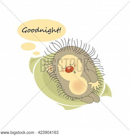 Goodnight. Sleeping Hedgehog. Sticker, Badge, Sticky Label With Quote. Lovely Happy Cute Character.