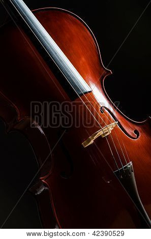 Violin in dark room  - music concept