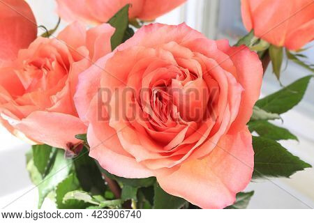 Close-up Of Beautiful Bouquet Of Delicate Coral Roses