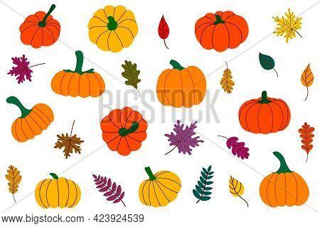 Autumn Fallen Leaves And Pumpkins Thanksgiving Set, Harvest, Halloween.vector Illustration