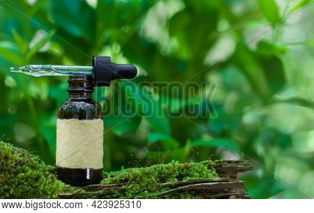 Alternative Medicine And Remedy, Herbal Natural Oil. Green Blurred Background. Copy Space.