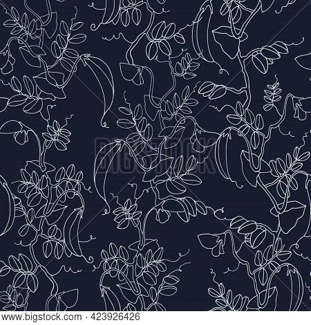 Seamless Pattern. Pea Plant With Pods And Flowers. Vector Illustration, Line Art On Dark Background