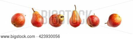 Red Ripe Juicy Pear Isolated On White Background. Sweet Whole Pears Different Shapes. Summer Healthy