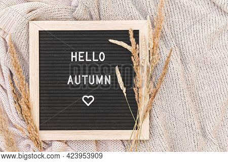 Autumnal Background. Black Letter Board With Text Phrase Hello Autumn And Dried Plant Lying On White