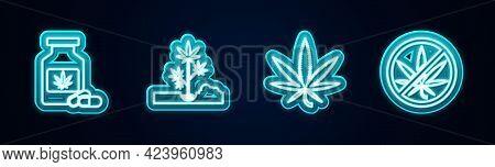Set Line Medical Bottle With Marijuana, Planting, Marijuana Or Cannabis Leaf And Stop. Glowing Neon