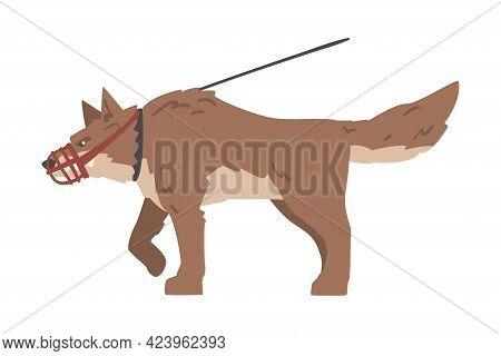 Angry Aggressive Dog On Leash Baring Its Teeth Vector Illustration