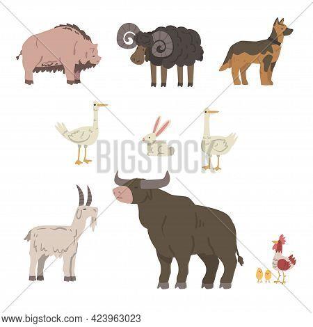 Farm Animals Set, Pig, Sheep, Bull, Goat, Goose, Rabbit Livestock Cartoon Vector Illustration