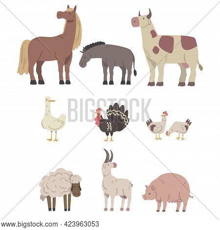 Farm Animals Set, Horse, Donkey, Cow, Goose, Turkey, Pig, Sheep Livestock Cartoon Vector Illustratio