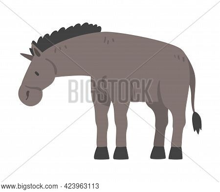Cute Donkey Farm Animal, Livestock Cartoon Vector Illustration