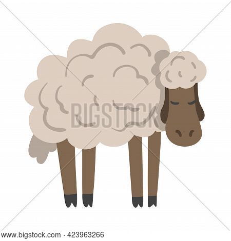 Cute White Fluffy Sheep Farm Animal, Livestock Cartoon Vector Illustration