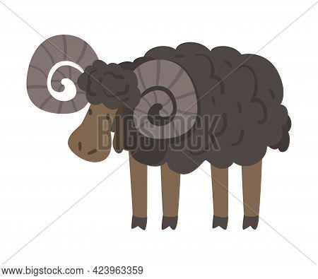 Cute Black Ram Farm Animal, Livestock Cartoon Vector Illustration