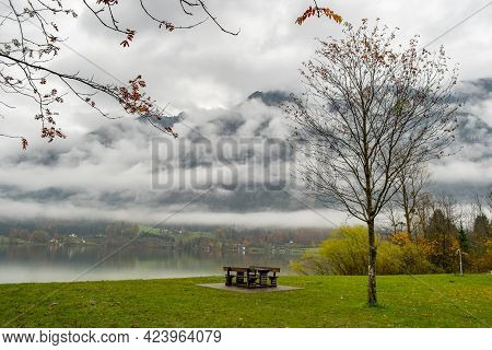 Moody Autumn Landscape With Bare Tree And Lonely Bench On Mountain Lake Shore.