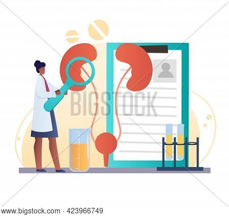 Urology And Nephrology, Kidneys Health. Pharmacy Research System And Educational Physiology Study. F
