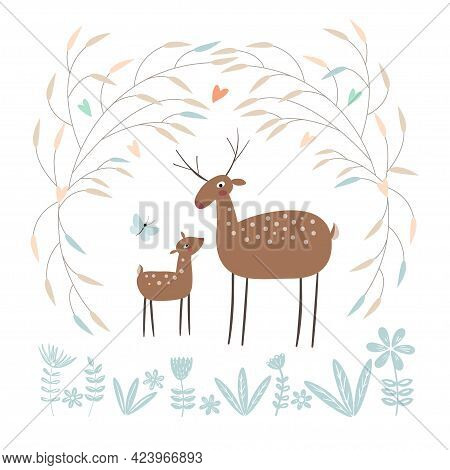 Two Deer Stand In The Forest. Mom Deer And Her Baby Isolated On A White Background.