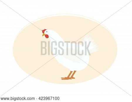 Vector Illustration Of A Domestic White Hen With A Red Comb And Beak