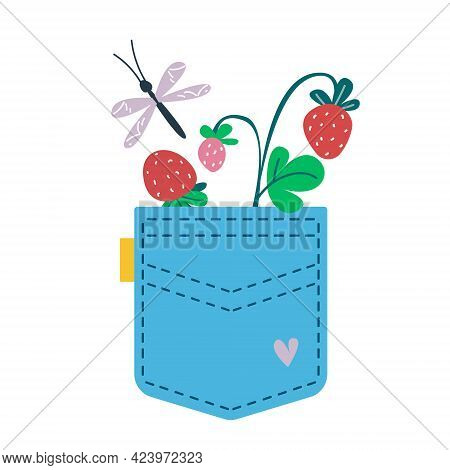A Sprig Of Strawberries Is In The Pocket Of Blue Jeans. Vector Illustration In Cartoon Children S St