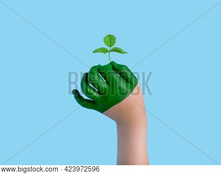 Child Hand Holding A Tree On A Blue Background Grass Concept Of Forest Conservation. Environment Ear