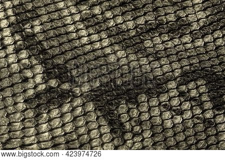 Genuine Leather Texture Embossed Under Exotic Reptile, Trendy Background. Concept Of Shopping, Manuf