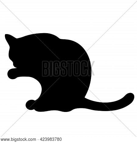 Black Cat Vector Icon. The Pet Is Washing. Hand-drawn Animal Silhouette. Isolated Illustration Of A