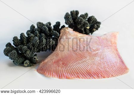 Close Up Of Fresh Raw Sting Ray Wing With Black Coral Isolated On White Background.