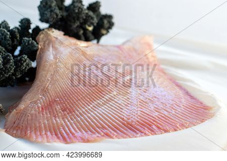 Macro Close Up Detail Of Fresh Manta Ray Wing Isolated On White Background.