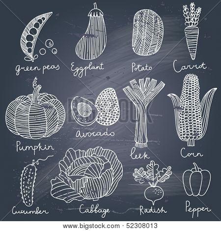 Tasty vegetables in vector set - green peas, eggplant, potato, carrot, pumpkin, avocado, leek, corn, cucumber, cabbage, radish, pepper. Tasty vegetarian concept collection