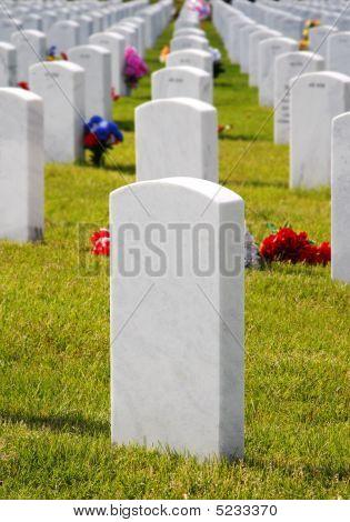 Military Cemetery Headstones & Flowers