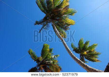 Beach La Presiosa