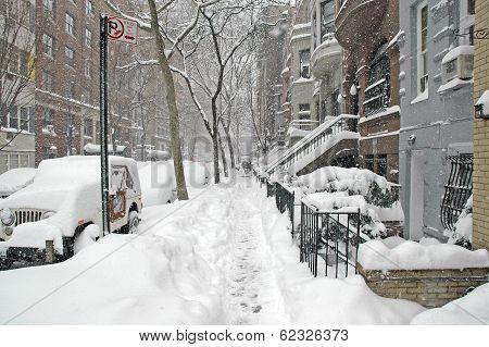 Central Park in the snow, Manhattan