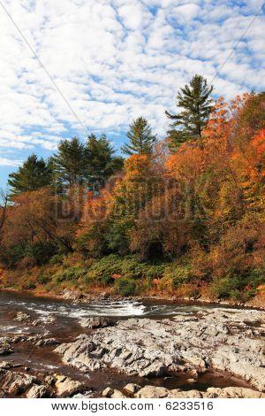 Vermont Foliage View