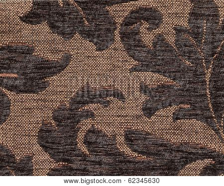 Dark Brown Fur And Yellow Base Forming An Curved Leaf Pattern