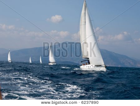 Yachts Competition
