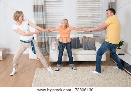 Parents Under Divorce Dividing Kids