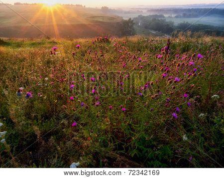 Sunrise In Hills In Russia