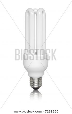 Isolated Fluorescent Light Bulb