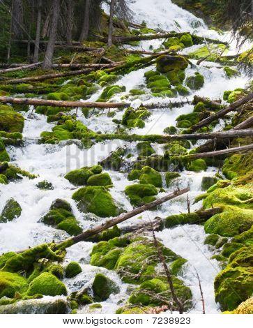 Karst Springs