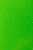 The Water droplets on a green background. poster