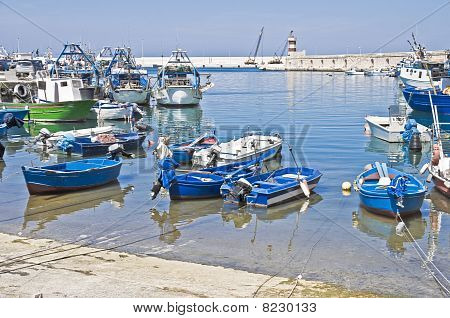 Boats moored at port. Monopoli. Apulia.
