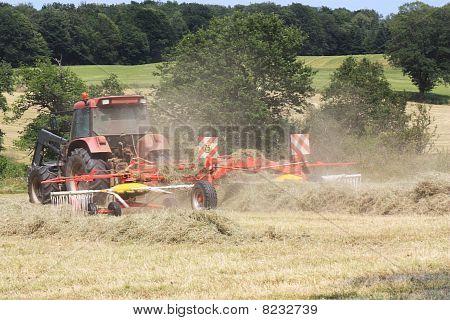 Raking Hay in Agriculture