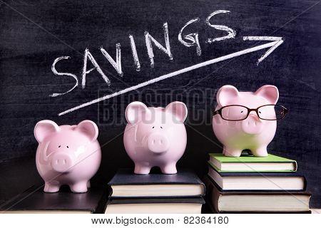 Piggy Banks With Savings Message