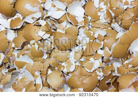 Image Of Crushed Egg Shells Backgrounds. Crack The Egg
