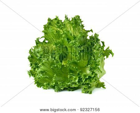 Green frillies iceberg Lettuce Isolated On White Background