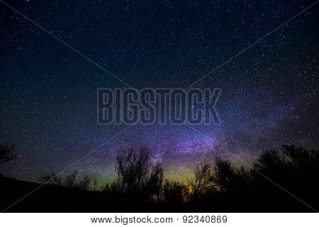 Milkyway Rising Over The Trees