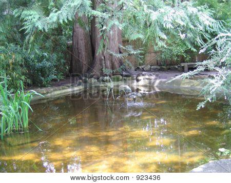 Bronze Cranes In Still Water