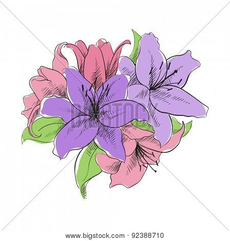 floral illustration of lilly flowers