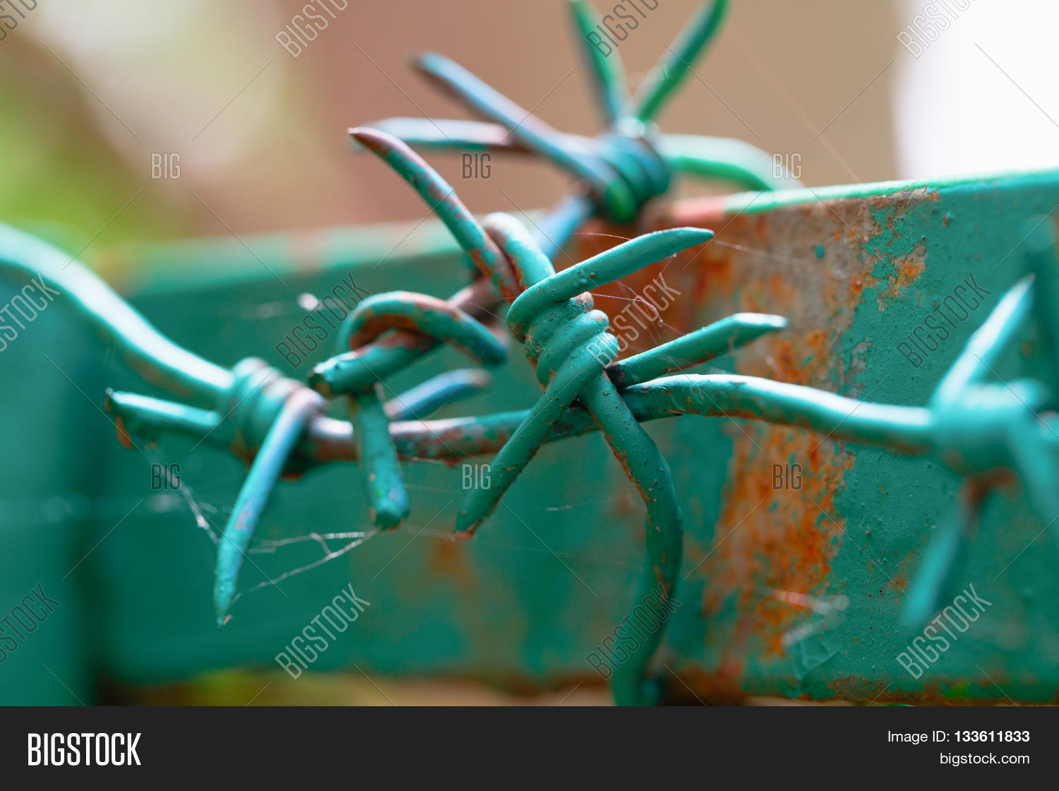 Barbed Wire On Top Image & Photo (Free Trial) | Bigstock