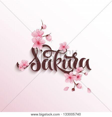 Vector illustration sakura cherry, branch with blooming flowers, Japan flowers