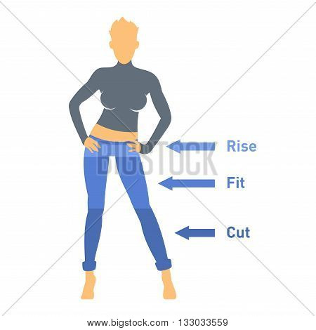 Women Jeans Parts Set on White Background. Vector