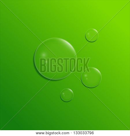 Vector water drops in the green background. Set of shiny bubbles.