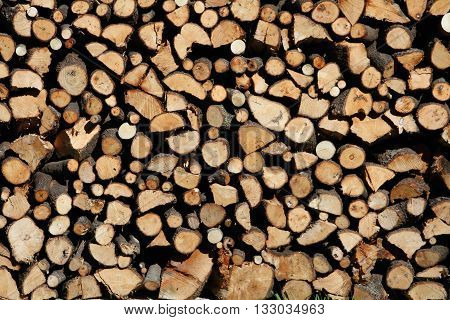 Pile Of Chopped Fire Wood And Crowded